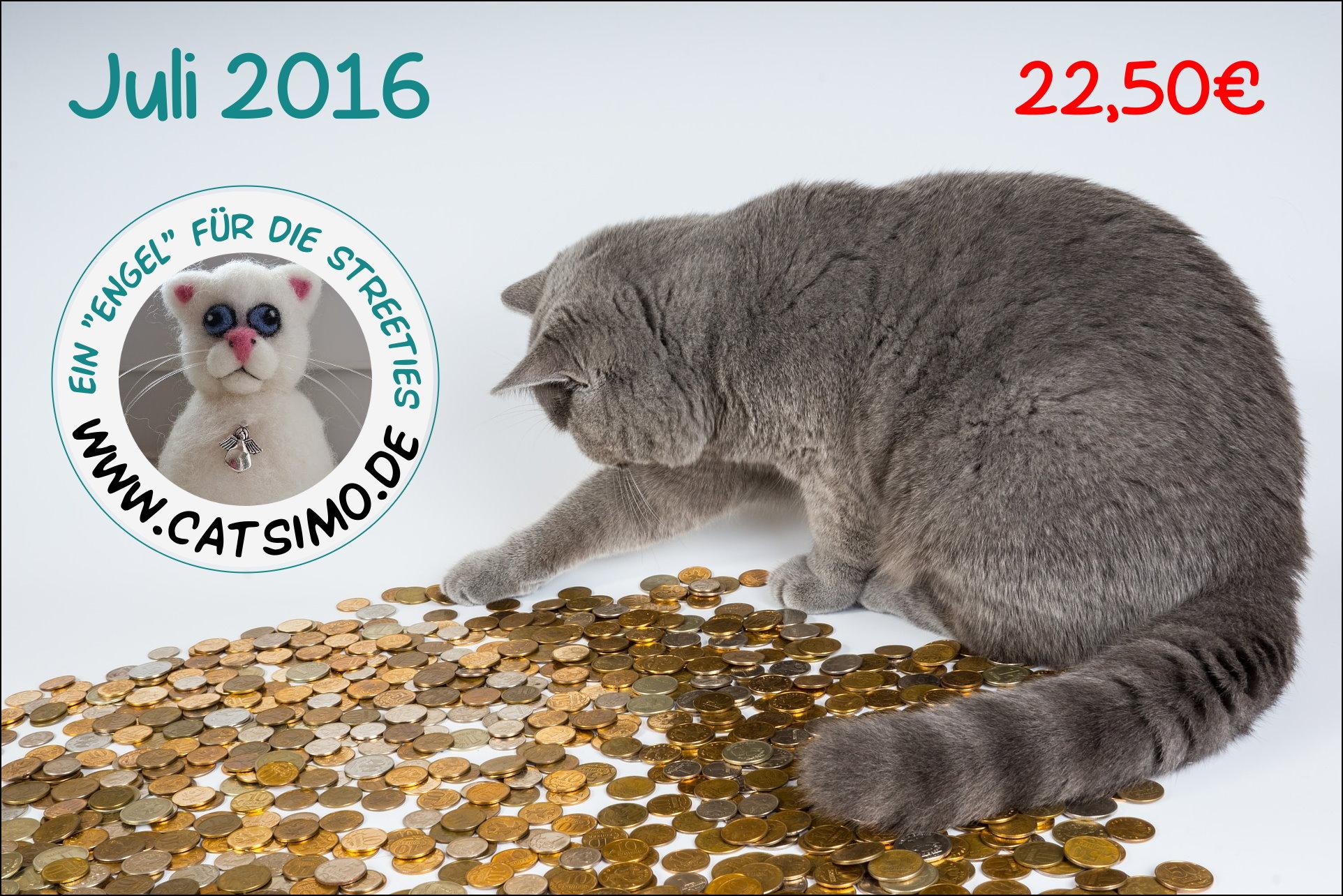 CatSiMo Tierschutz Juli 2016